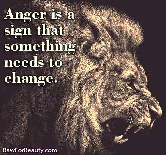 Ross Rosenberg Anger